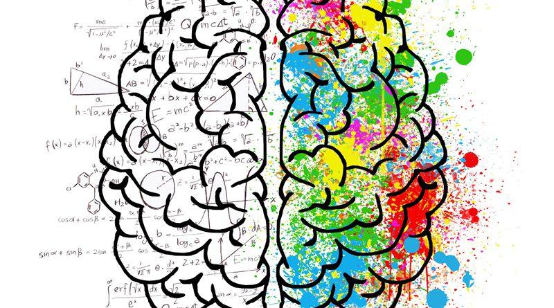 Autism Autistic Brain