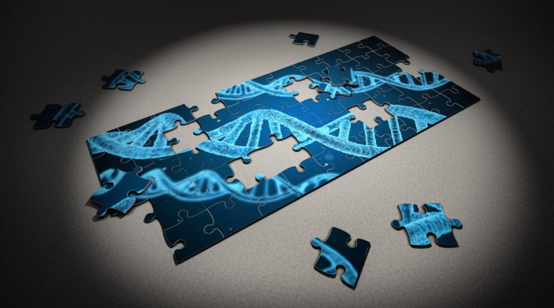 Autism Genetic Puzzle